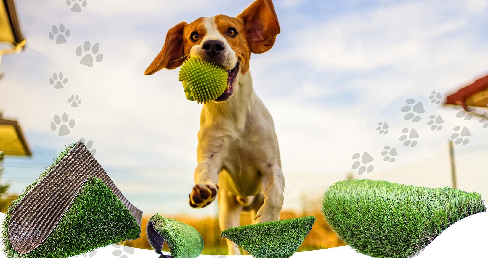 why choose artificial Grass Dog Jumping